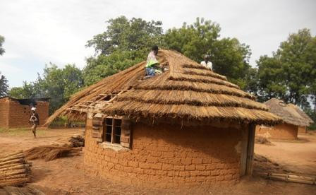 conference center hut-thatching roof